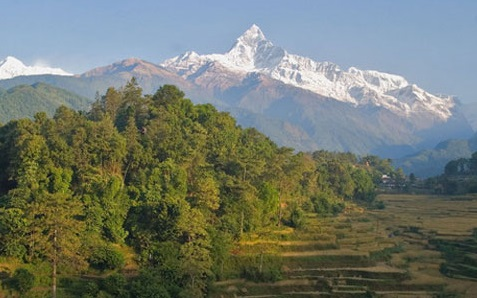 Nepal Terai Region